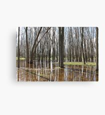 Wooded ! Canvas Print