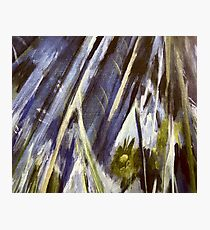 Grey Blue Bamboo Jungle Photographic Print