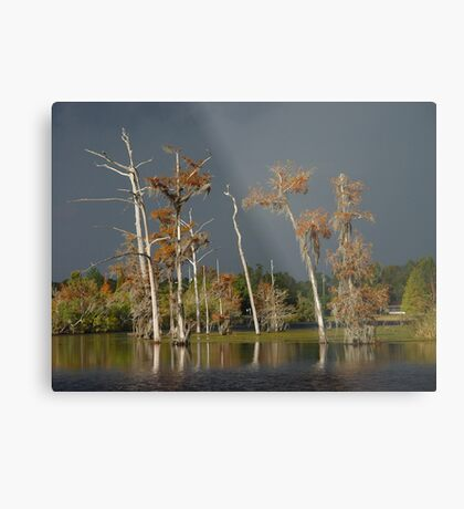 Lull Before the Storm Metal Print