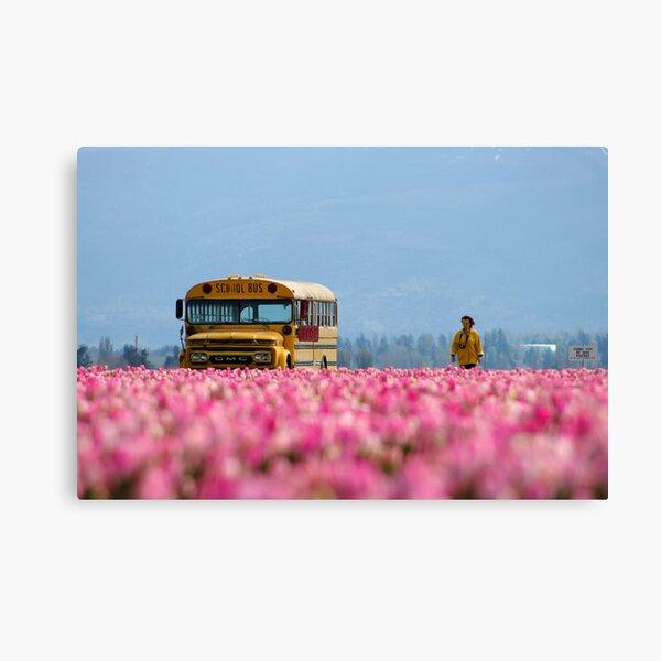 School Bus, Magic Bus. Canvas Print