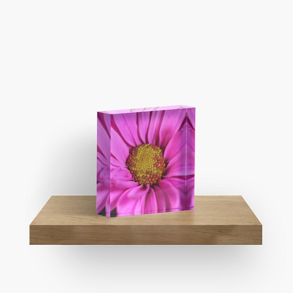 Schön in pink Acrylblock