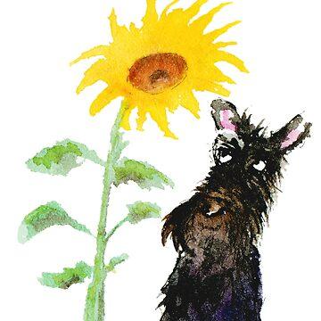 Scottie Dog & Sunflower by archyscottie