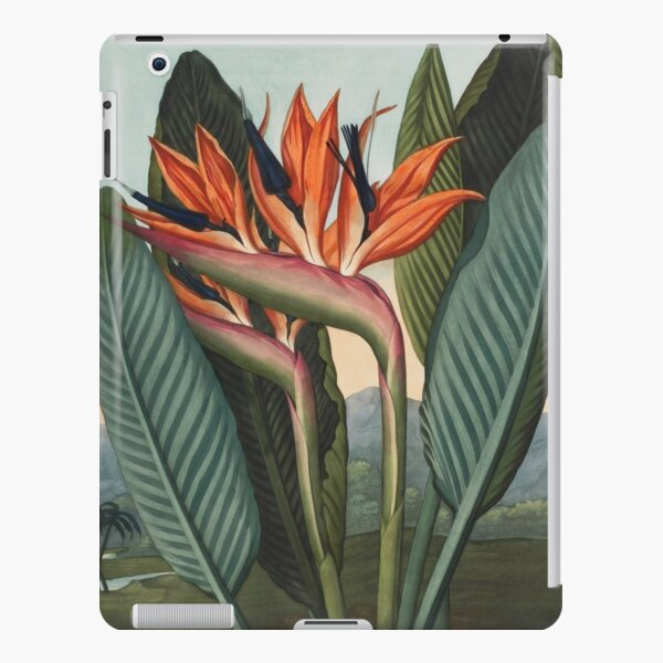 Botanical illustration: Bird of Paradise (Strelitzia) – State Library Victoria iPad Snap Case