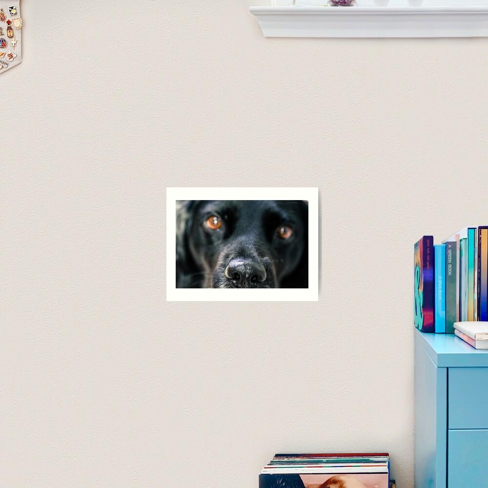 Dog Truffle Art Print By Evazionphoto85 Redbubble