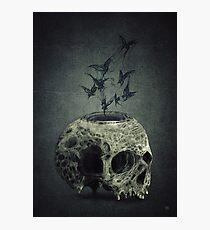Skull Bats Photographic Print