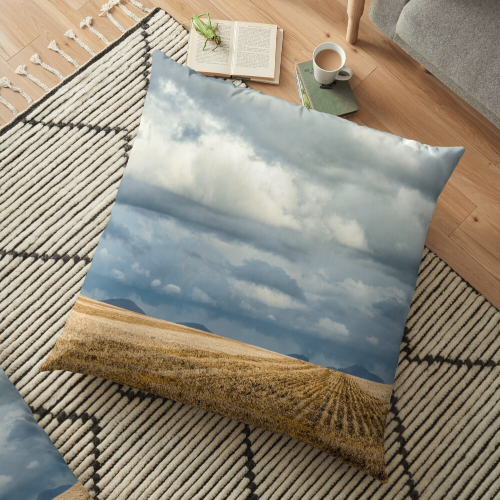 Wide Open Floor Pillow
