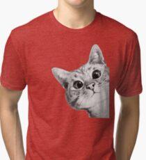 sneaky cat Tri-blend T-Shirt