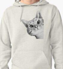 Sudadera con capucha gato furtivo