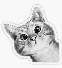 sneaky cat Transparent Sticker