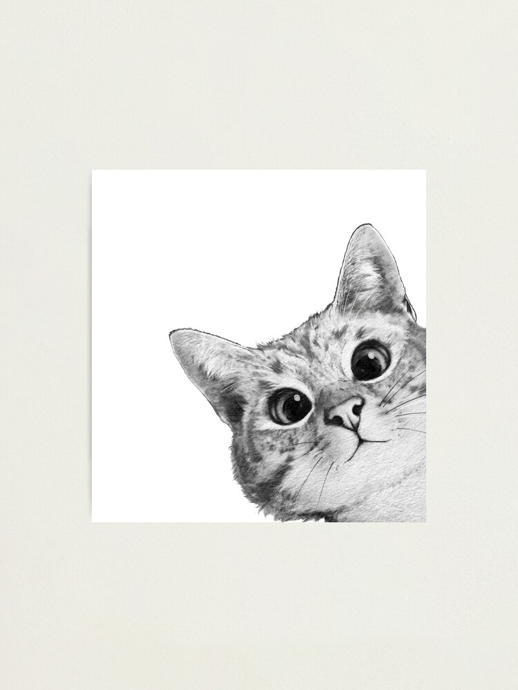 Alternate view of sneaky cat Photographic Print