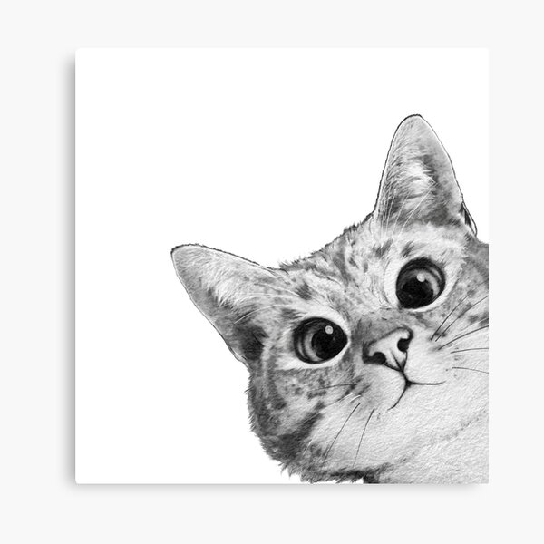 gato astuto Lienzo