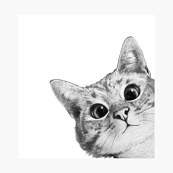 sneaky cat Photographic Print