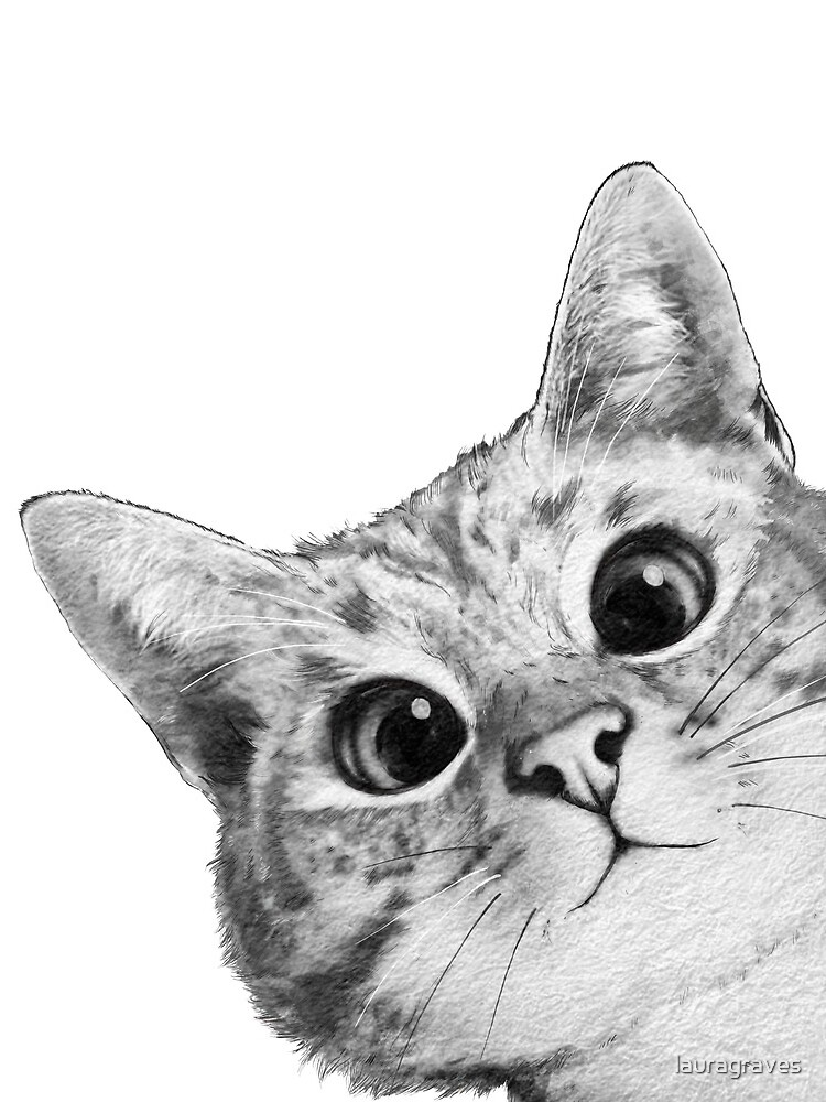 sneaky cat by lauragraves
