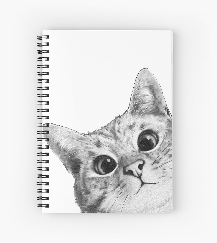 «gato furtivo» de lauragraves