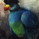 Fleeting: Turaco by NoelleMBrooks