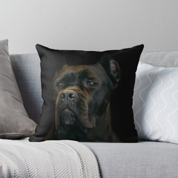 Cane Corso Pillows Cushions Redbubble