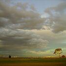 Sky  by ingridrob
