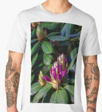Background of beautiful pink azalea flowers Men's Premium T-Shirt
