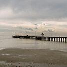 Rosebud Pier by Maryanne Fenech-Gatt