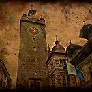 Zurich. Rathaus (Town hall) by egold