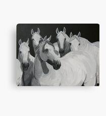 """*""""Full Attention""""* Canvas Print"""