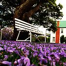 Jacaranda Carpet 2 by oddoutlet