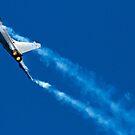 Dassault Rafale Display by Chris Ayre