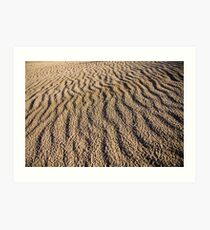 Canunda National Park Art Print
