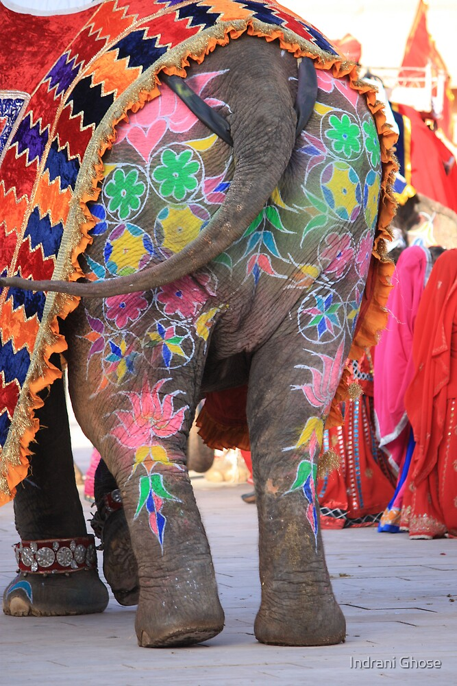 Arty Elephant by Indrani Ghose