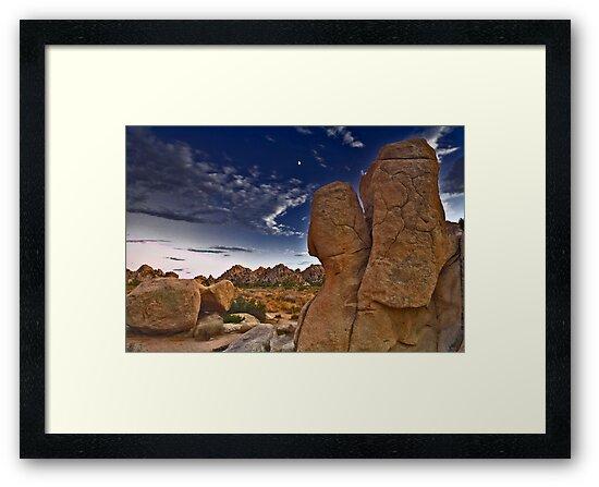 Joshua Tree Twilight by photosbyflood