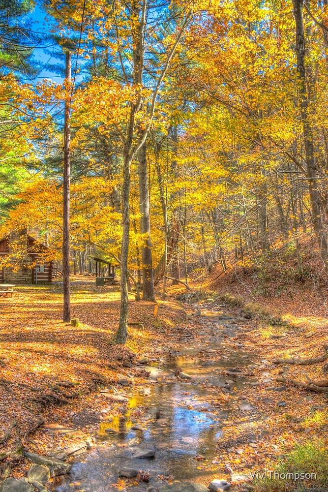 Golden Walks by Viv Thompson