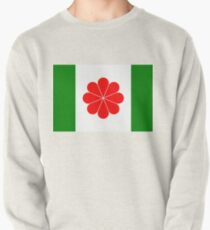 Flag of Independent Taiwan - 臺灣獨立運動 - 台灣獨立運動 - Taiwanese Independence Pullover Sweatshirt