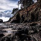 On a Dark Day - Oregon Coast by Charles & Patricia   Harkins ~ Picture Oregon