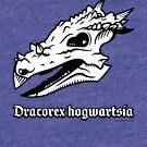 Dracorex hogwartsia skull! by David Orr
