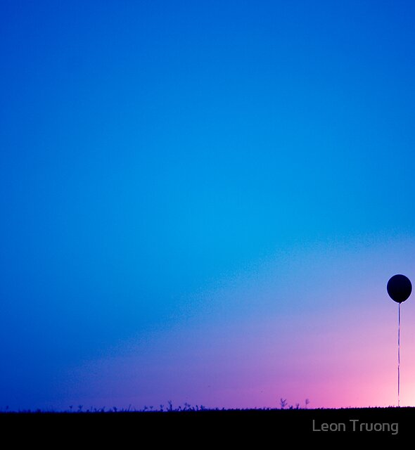 Sometime I lose grip of reality...and I let go.... by Leon Truong