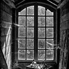 Old window by Patrick Reinquin