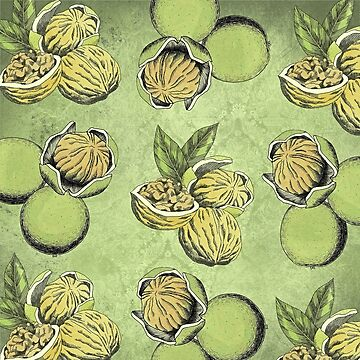 Walnuts Faded Lime Color by ImageMonkey