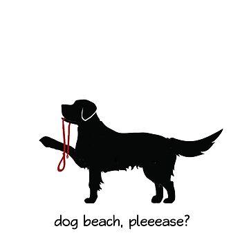 Love the Dog Beach by graceandfinn