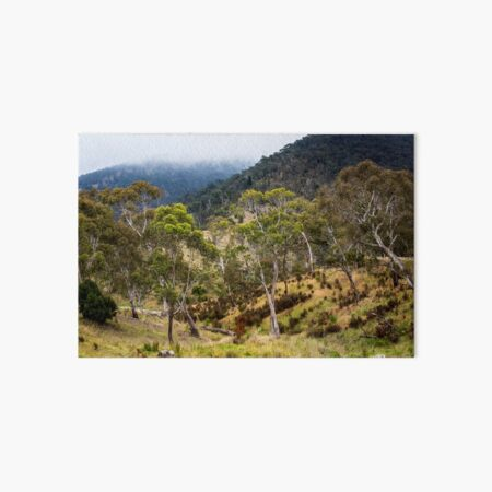 High Country Gums Art Board Print