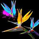 Bird Of Paradise Tropical Flower  by ArtVixen