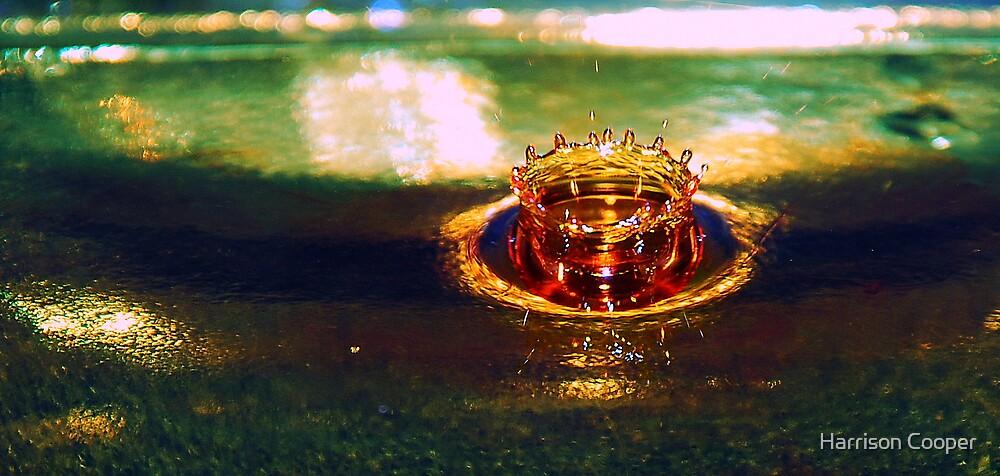 Golden crown by Harrison Cooper