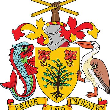 Coat of Arms - Barbados by identiti