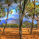 The Grampians by aussiedi