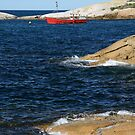 Coastal scene with red fishing boat by quentinjlang