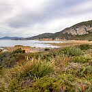 Burgess Cove, Rocky Cape National Park, Tasmania by Christine Smith