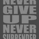 Never Surrender by stonestreet
