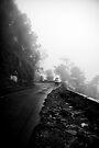 Rain and gloom by Vikram Franklin