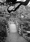 Ryogoku Gardens, Tokyo by John Douglas