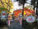 Tokyo Funfair by John Douglas