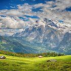View From Männlichen Walking Trail by Susan Dost